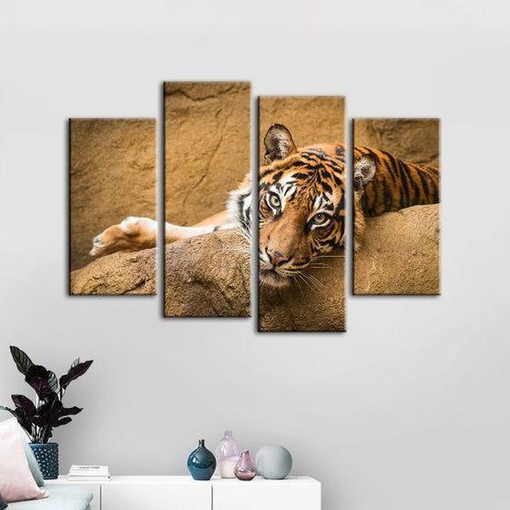 Relaxed Wild Tiger 4 Panels Canvas Wall Art Decor