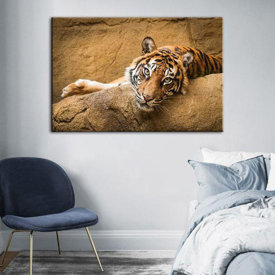 Relaxed Wild Tiger Canvas Wall Art Decor
