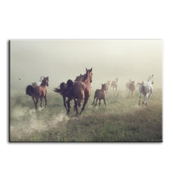 Running Herd Of Horses Canvas Wall Art