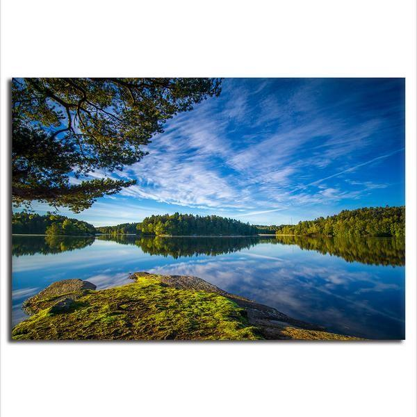 Scenic Nature Landscape Canvas Wall Art   Tall Trees Canvas Print ...