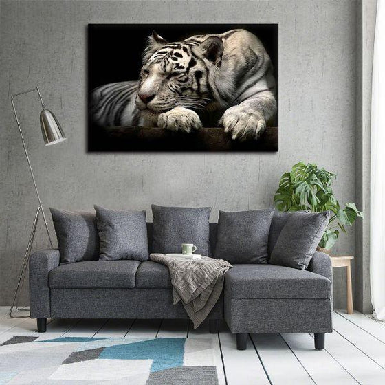 Sleeping White Tiger Canvas Wall Art Print