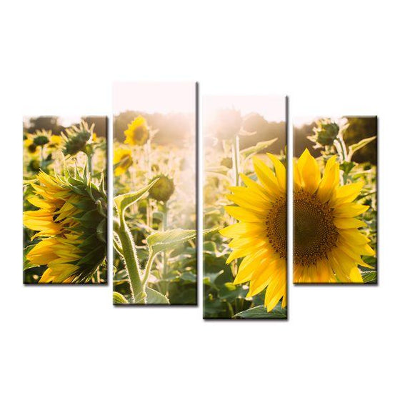 Sunflower And Sunshine Canvas Wall Art