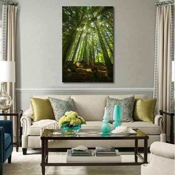 Sunlight And Tall Trees Wall Art Canvas