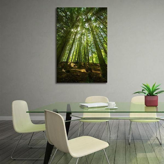 Sunlight And Tall Trees Wall Art Dining Room