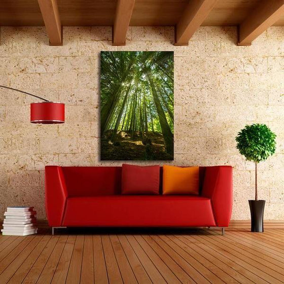 Sunlight And Tall Trees Wall Art Ideas