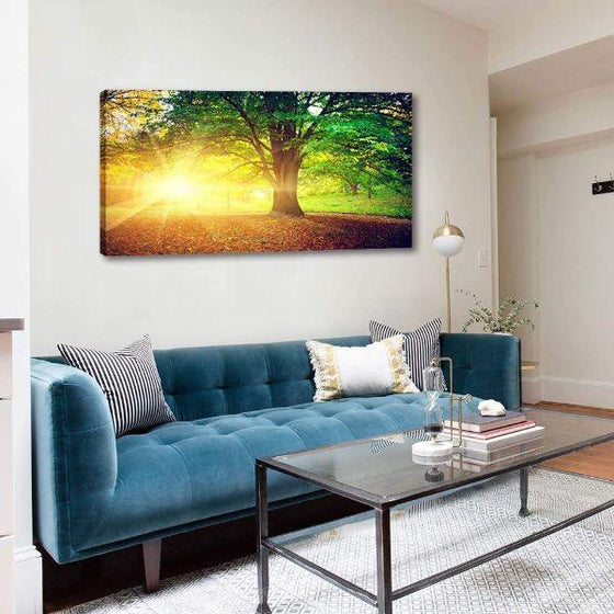 Sunlight Over A Huge Tree Canvas Wall Art Decor