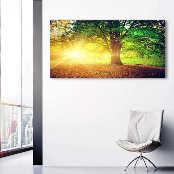 Sunlight Over A Huge Tree Canvas Wall Art Ideas