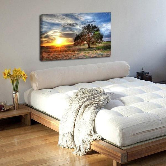 Sunrise And A Solitary Tree Wall Art Bedroom