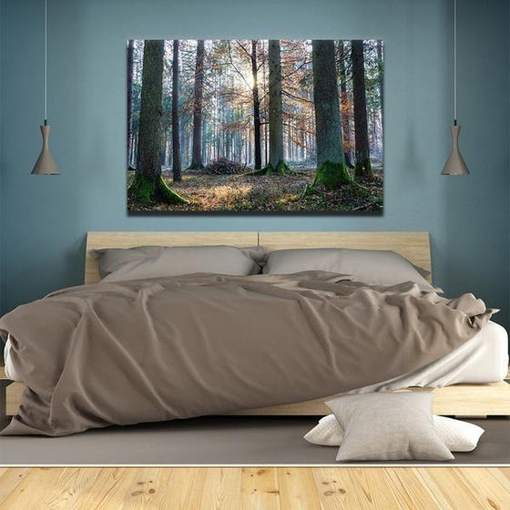 Sunrise In The Woods Wall Art Bedroom