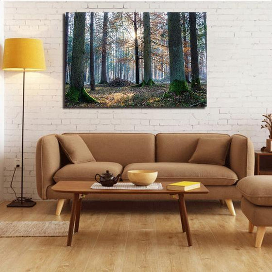 Sunrise In The Woods Wall Art Decor