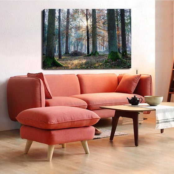 Sunrise In The Woods Wall Art Living Room