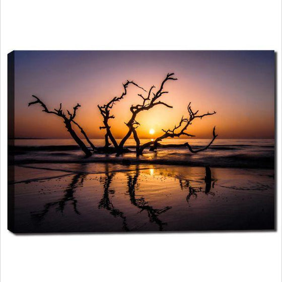 Sunrise With Tree Branches Wall Art