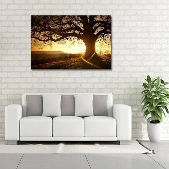 Sunset With Old Tree Wall Art Decor