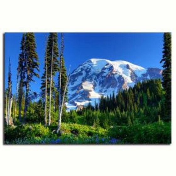 Tall Trees And Snowy Mountain Wall Art Canvas