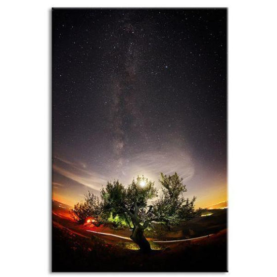Tree & Starry Night Sky Canvas Wall Art
