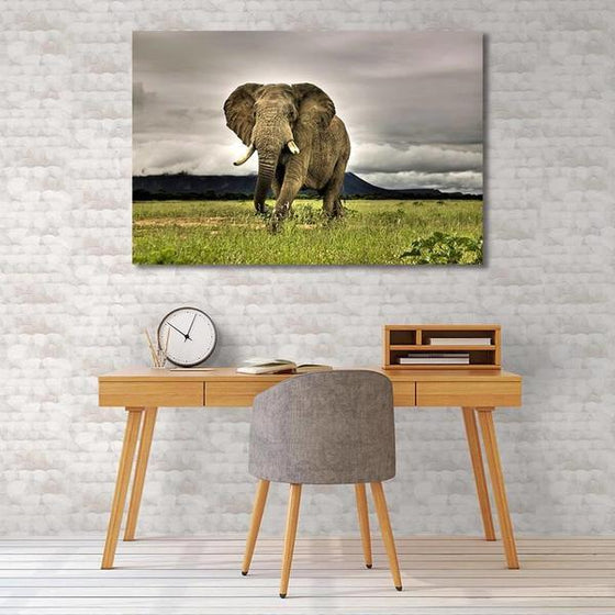 Wild Elephant Canvas Wall Art Bedroom