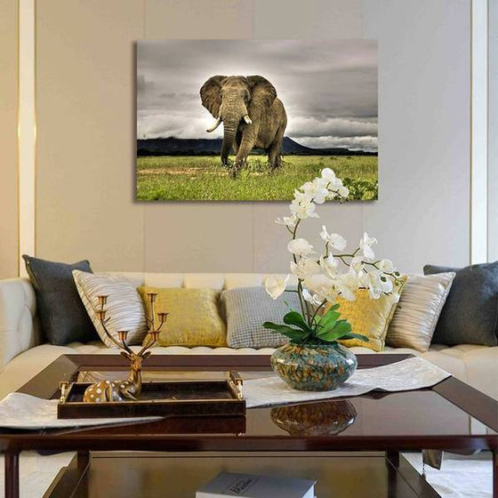 Wild Elephant Canvas Wall Art Decor