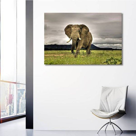 Wild Elephant Canvas Wall Art Ideas