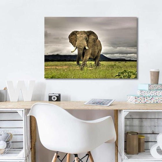 Wild Elephant Canvas Wall Art Print