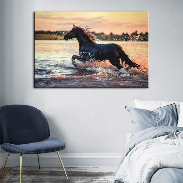 Wild Horse At The Beach Canvas Wall Art Bedroom