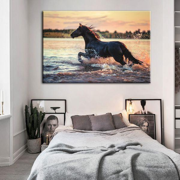 Wild Horse At The Beach Canvas Art