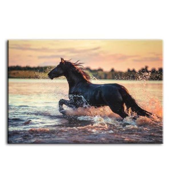 Wild Horse At The Beach Canvas Wall Art