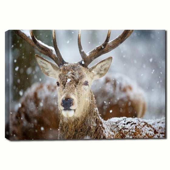 Winter Deer Head Canvas Wall Art