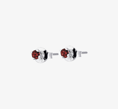 Birthstone Studs January