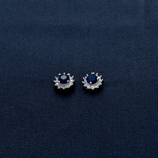 Dreamy Blue and Glittering Silver Earrings