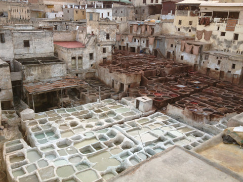 The Tannery - Fes (Morocco motorbike tour)