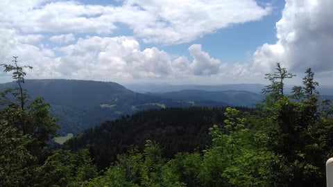 A view from the B500 - Black Forest Motorbike Tour