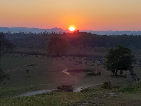 Thailand and Laos Motorcycle Tour - Sunset over plain of Jars