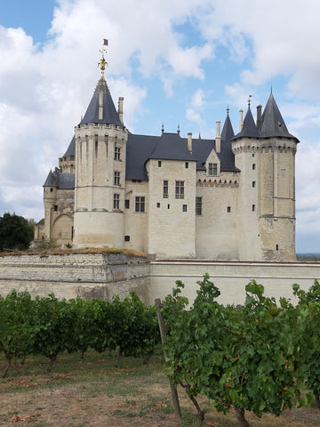Chateau Saumur - Bridge Motorcycle Tour