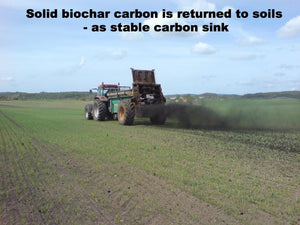 Carbon Removal of Yearly Personal Footprint (Swedish average) - ECOERA Millennium(TM) Biochar Carbon Sink