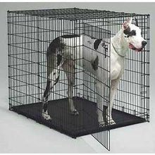 Crates & Kennels - Grreat Choice® Wire Dog Crate