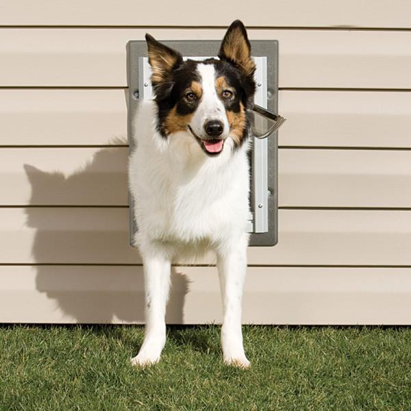 Doors - PetSafe® Alluminum Wall Entry Pet Door