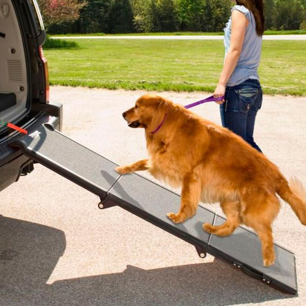 Steps & Ramps - Pet Gear Tri-Fold Pet Ramp