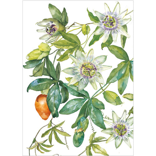 Greeting Card - Passion Flowers
