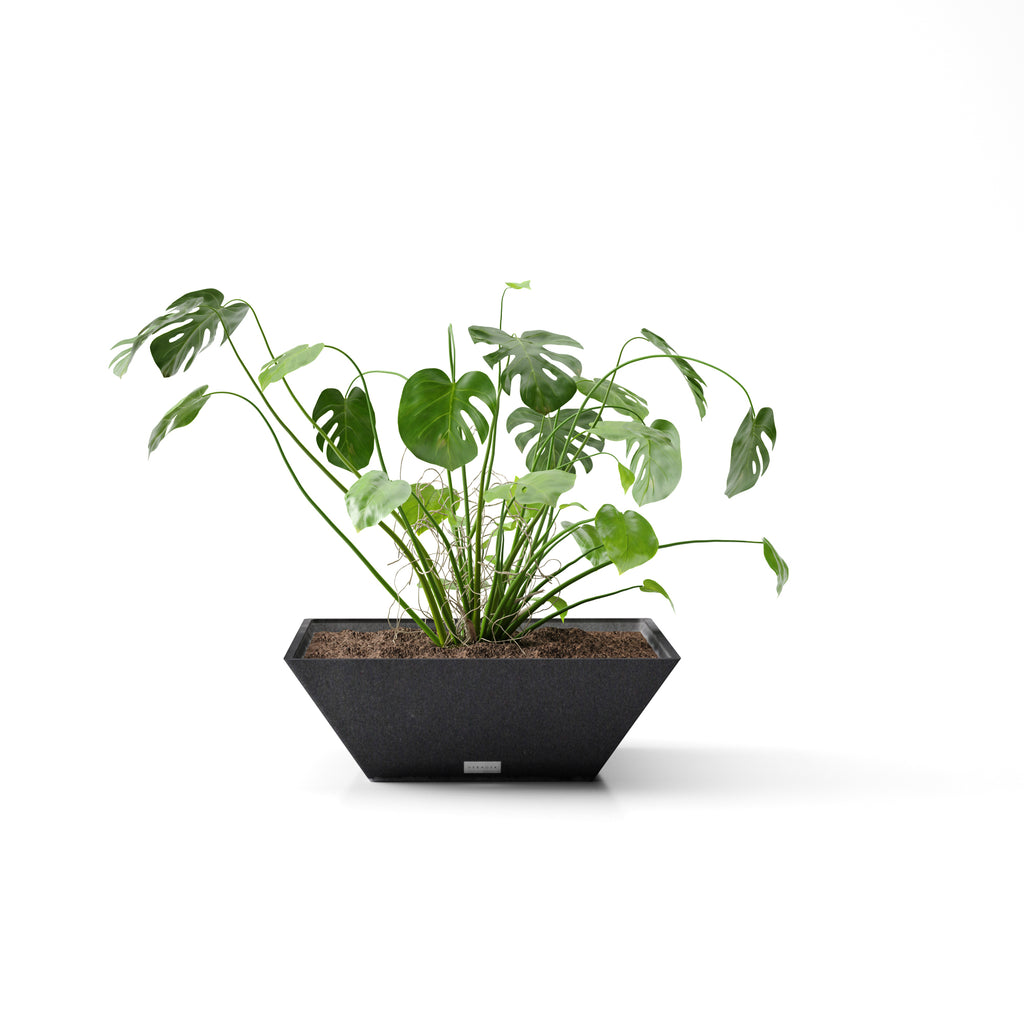Veradek Trapezoid Square Planter Bowl - Black