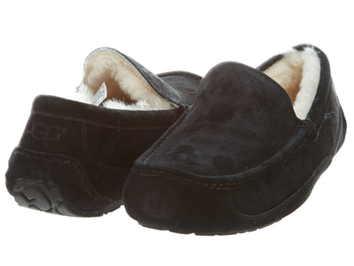 Ugg Asot Shoes  Mens Style :5775