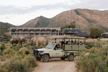 Private Game Reserve - BIG 5 Experience