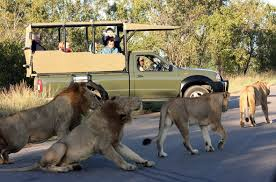 Kruger National Park - Self Drive