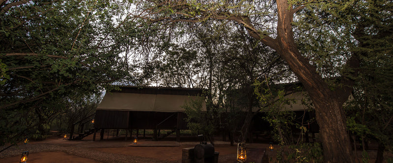 Mosetlha Bush Camp & Eco-Lodge