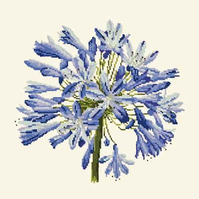 Agapanthus Needlepoint Kit Kits Elizabeth Bradley Design Winter White