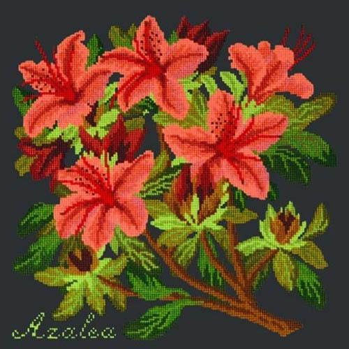 Azalea Needlepoint Kit Kits Elizabeth Bradley Design
