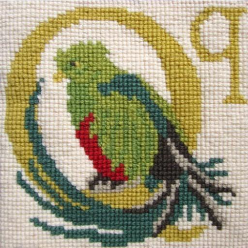 Beginner Needlepoint Kit Animal Alphabet Letter Q - Quetzal Kits Elizabeth Bradley Design