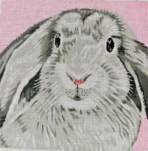 Floppy Ear Bunny on Pink Painted Canvas The Meredith Collection