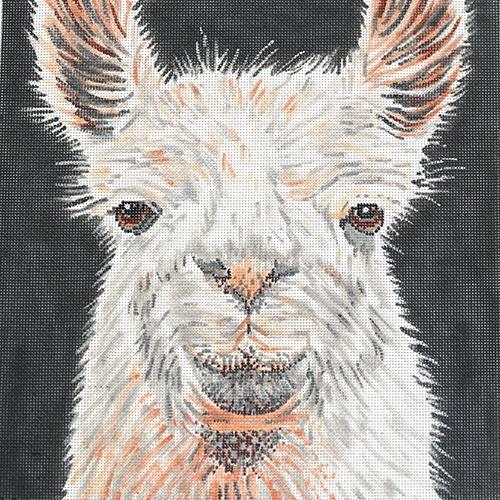 Llama Painted Canvas The Meredith Collection