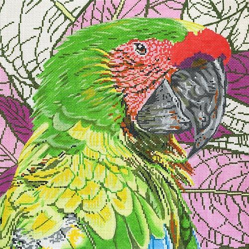 Parrot Buffon / Great Green Macaw Painted Canvas The Meredith Collection