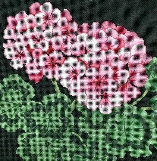 Pink Geraniums Painted Canvas Brenda Stofft Designs
